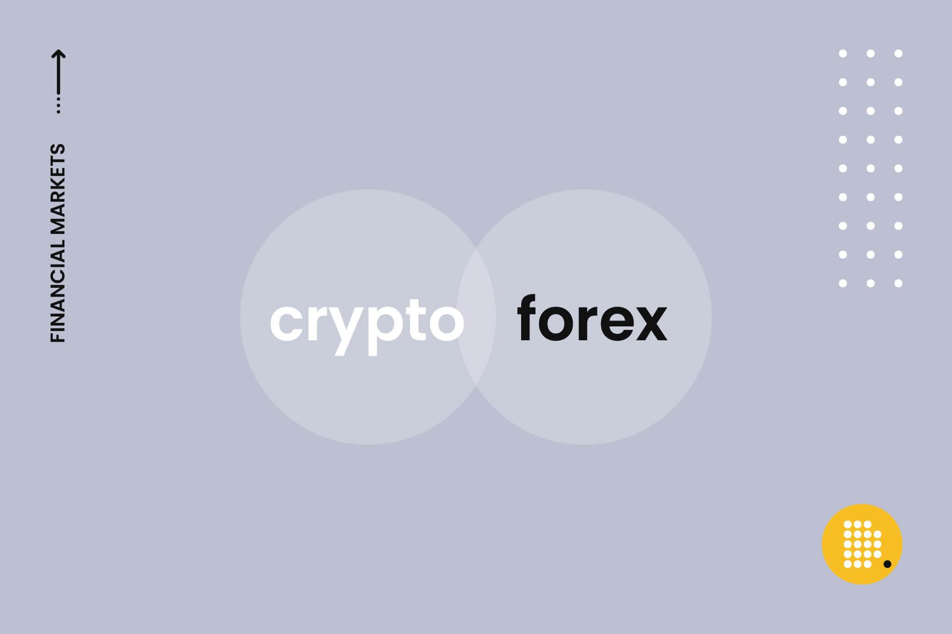 crypto or forex dailycoin