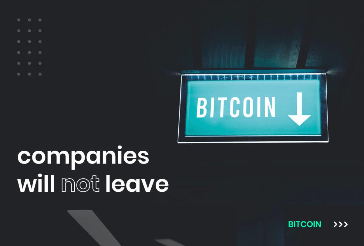 bitcoin price drop institutional investors