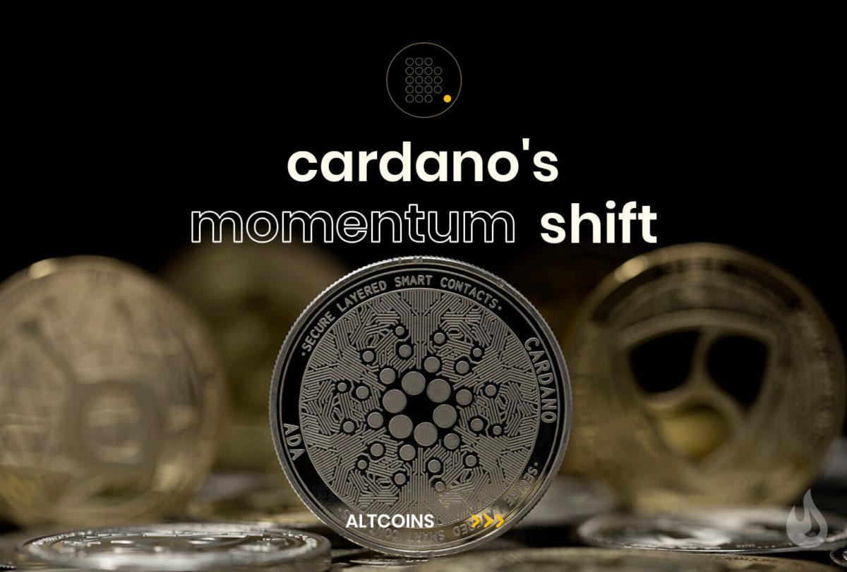 Cardano Momentum Shift