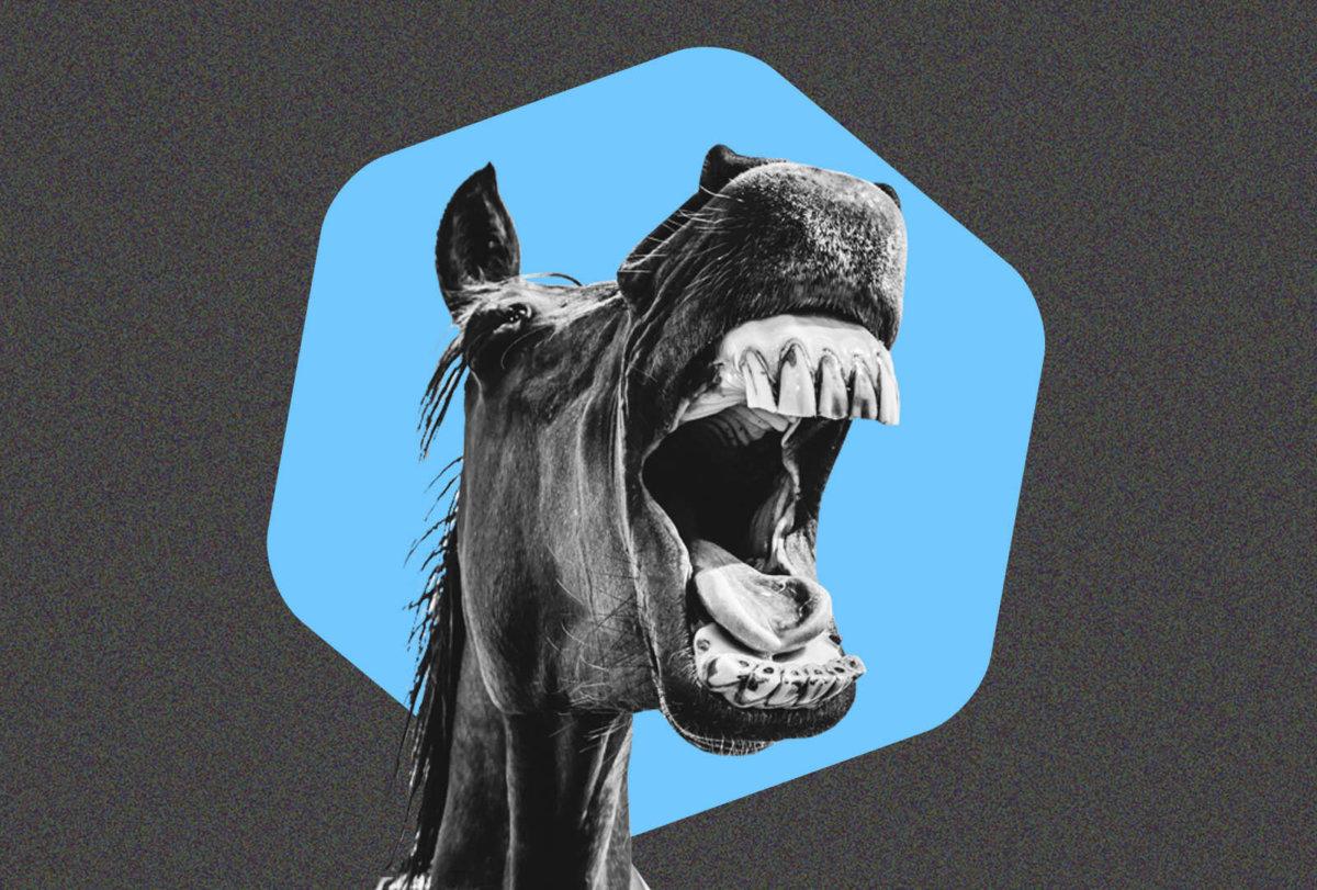 Telcoin Dark Horse