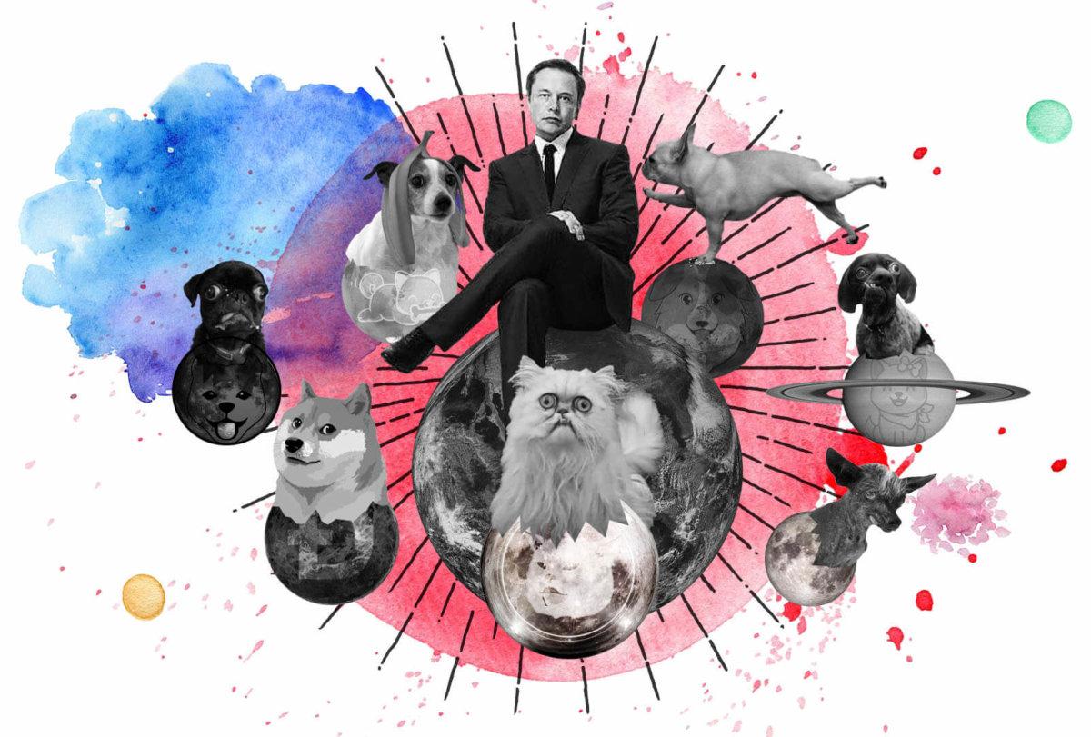 copydogs dogecoin inukeanu