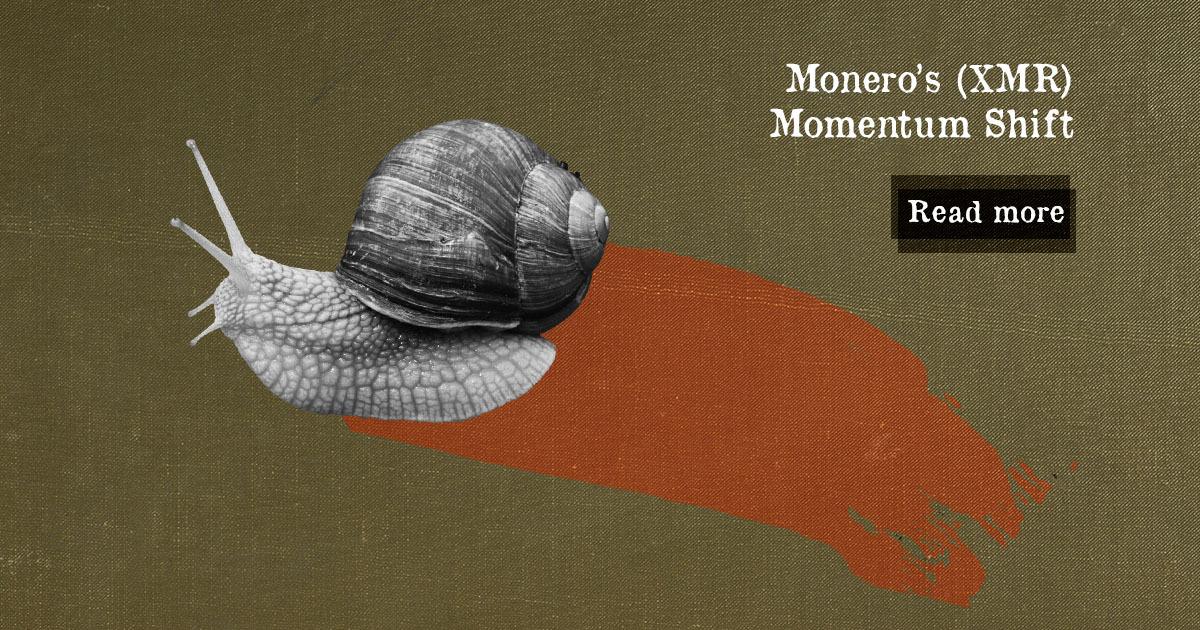 Monero's (XMR) Momentum Shift — DailyCoin